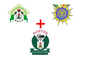 WAEC/NECO/NABTEB DAILY SUBSCRIPTIONS